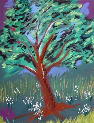 Johnny Appleseed Art Print by Randy Ross