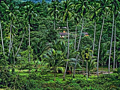 Jungle Life Print by Steve Harrington