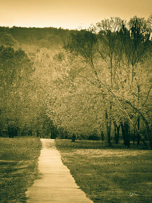 Photograph - Just A Short Walk by Rebecca J Dunn