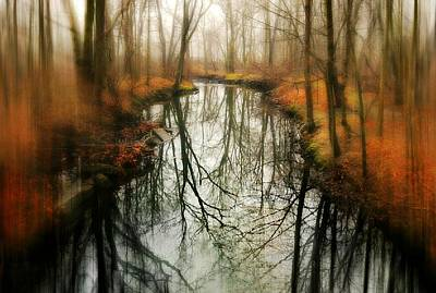 Nature Center Pond Photograph - Just One Wish by Diana Angstadt