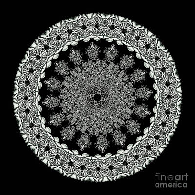 Kaleidoscope Ernst Haeckl Sea Life Series Black And White Set 2 Art Print by Amy Cicconi