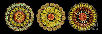 Kaleidoscope Ernst Haeckl Sea Life Series Triptych Art Print by Amy Cicconi