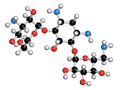 Kanamycin Antibiotic Drug Molecule Art Print by Molekuul