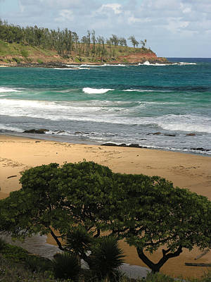 Photograph - Kauai Beach by Robert Lozen