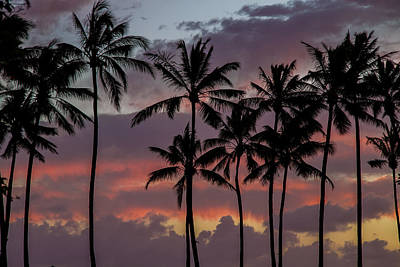 Photograph - Kauai Sunset by Roger Mullenhour