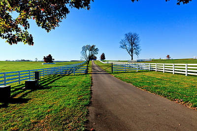Photograph - Kentucky Thoroughbred Farm by Ben Graham
