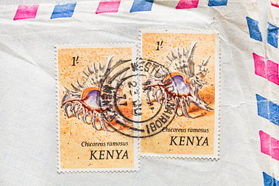 Old Post Office Photograph - Kenya Stamp by Tom Gowanlock