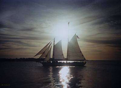 Photograph - Key West Sails by Rob Hans