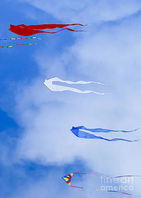 Photograph - Kites On Ice by Steven Ralser