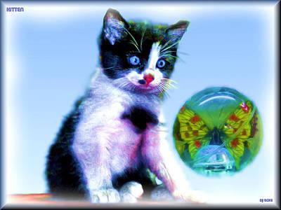 Kitten Original by Daniel Janda