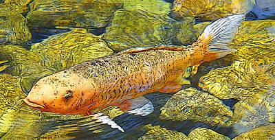 Goldfish Digital Art - Koi Carp Goldfish In Pond by A Gurmankin