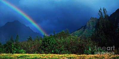 Koolau Mountains And Rainbow Art Print by Thomas R Fletcher