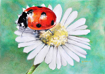 Daisy Drawing - Ladybug by Stefan Peters