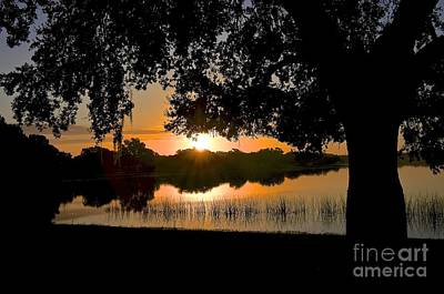 Photograph - Lake Bonny Sunrise by Carol  Bradley