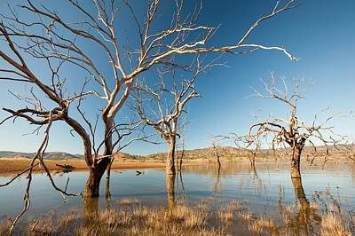 Lake Eildon In Drought Art Print