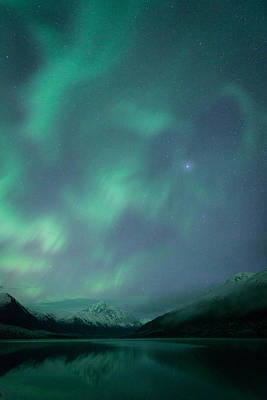 Photograph - Lake Eklutna Aurora by Roger Clifford