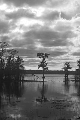 Photograph - Lake Martin by Ronald Olivier
