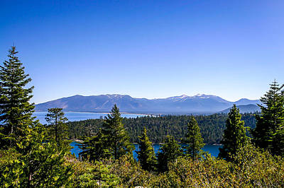 Photograph - Lake Tahoe by Shey Stitt