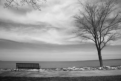 Photograph - Lake Tree And Park Bench by Frank Romeo