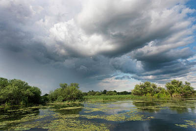 Lakes In The Danube Delta, Romania Art Print