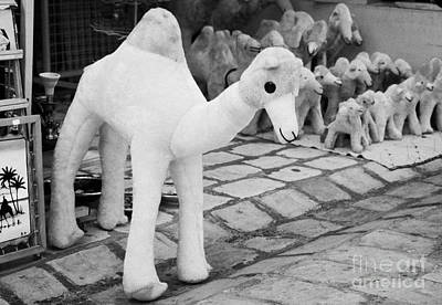 Large Soft Toy Stuffed Camel Souvenir At Market Stall In Nabeul Tunisia Print by Joe Fox