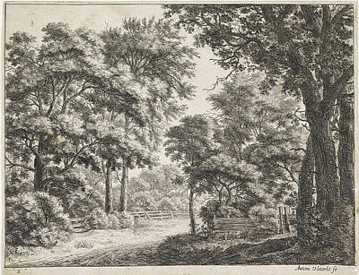 Fence Drawing - Large Trees On Either Side Of A Path, Anthonie Waterloo by Anthonie Waterloo