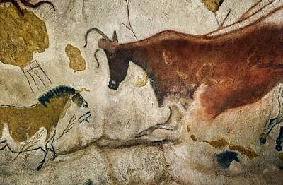 21st Century Photograph - Lascaux II Cave Painting Replica by Science Photo Library