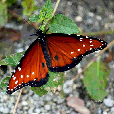 Last Butterfly Of The Season Art Print by Suzanne Gaff