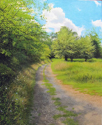 Painting - Late Summer Curve by David Bottini
