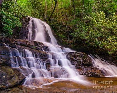 Photograph - Laurel Falls by Anthony Heflin