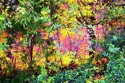 Art Print featuring the photograph Leafy II by Shirley Moravec