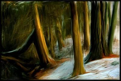 Digital Art - Lemoine Forest by Jim Vance