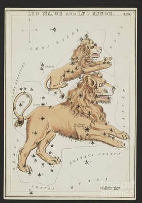 Photograph - Leo Major And Leo Minor Constellations by Science Source
