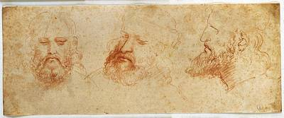 Leonardo Da Vinci, Profile Art Print by Everett