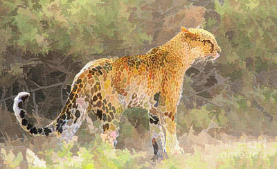 Digital Art - Leopard by Liz Leyden