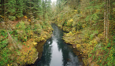 Lewis River Art Print by Twenty Two North Photography