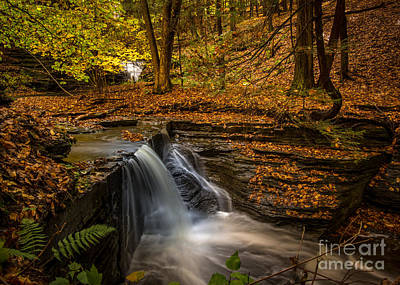 Photograph - Lick Brook Falls by Brad Marzolf Photography