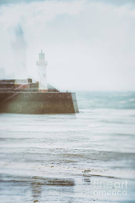 Dog Walking Photograph - Lighthouse by Amanda Elwell
