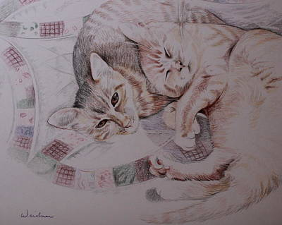 Drawing - Lilly And Maddie by Kathy Weidner
