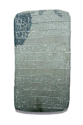 Dig Photograph - Linear B Tablet by David Parker