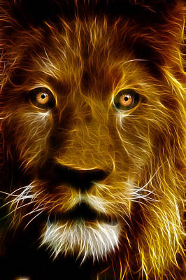 Lion Portrait Print by Tilly Williams