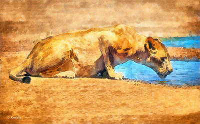Fauna Painting - Lioness Drinking by George Rossidis