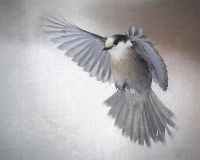 Digital Art - Little Gray Angel by Gerry Sibell