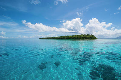 Micronesia Photograph - Little Islet In The Ant Atoll, Pohnpei by Michael Runkel