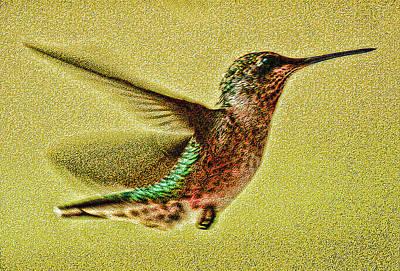 Little Wings Art Print by Joe Bledsoe