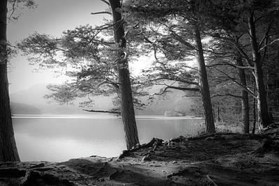Fir Photograph - Loch An Eilein by Dorit Fuhg