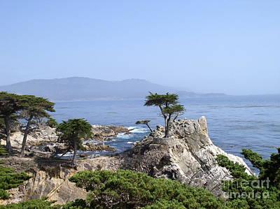 Ocean Photograph - Lone Cypress by Bev Conover