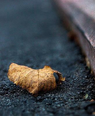 Lone Leaf Original