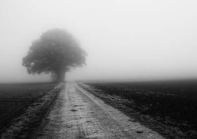 Photograph - Lost In The Fog by Miguel Winterpacht