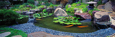 Lotus Blossoms, Japanese Garden Art Print by Panoramic Images